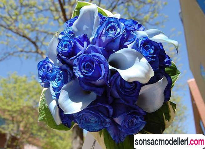 mavi gelin çiçekleri için örnek