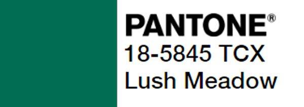 Lush Meadow Pantone Kodu 18-5845